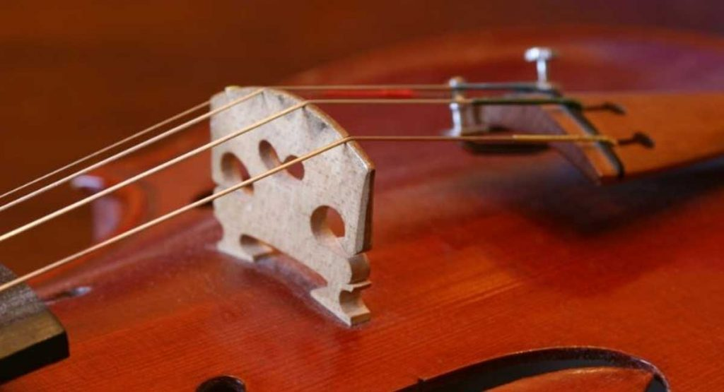 The Best Violin Bridge of 2021